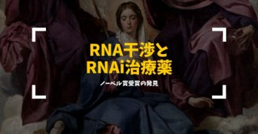 核酸医薬の解説:RNA干渉とRNAi治療薬