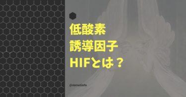 低酸素誘導因子HIFの解説