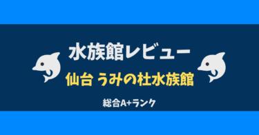 仙台うみの杜水族館【必見ポイント紹介】