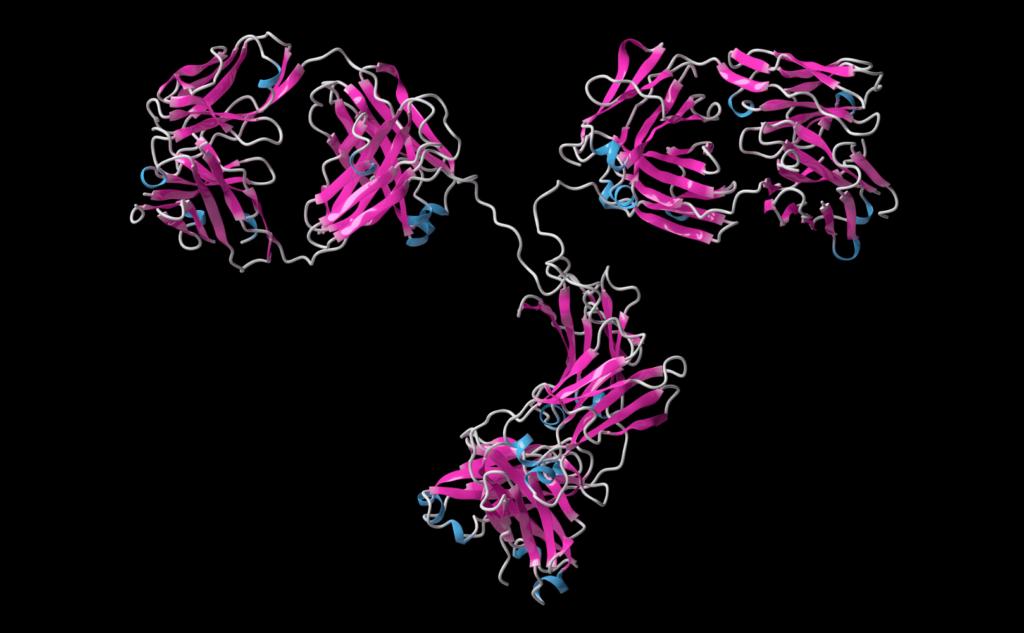 抗TROP-2-ADC