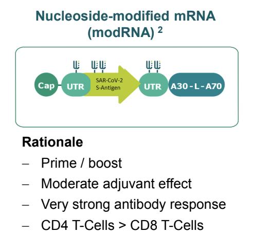ヌクレオチド修飾mRNAワクチン(修飾ウリジンmRNAワクチン)