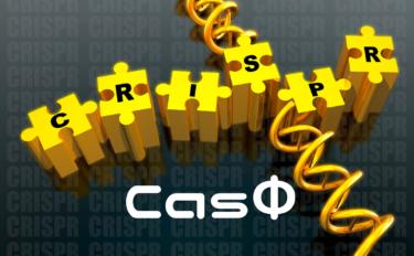 CRISPR-CasΦって何?【創薬を変えるテクノロジーかも?】