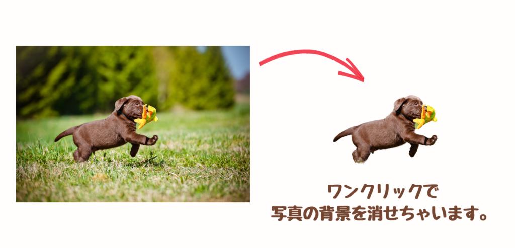 Background Removerのイメージ画像です。
