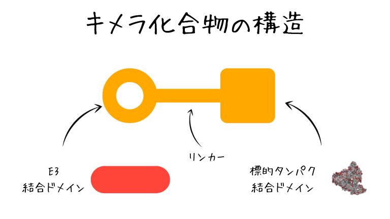 キメラ化合物の構造